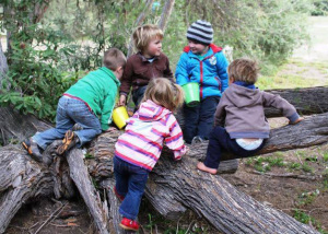 2014 Nature Play Week