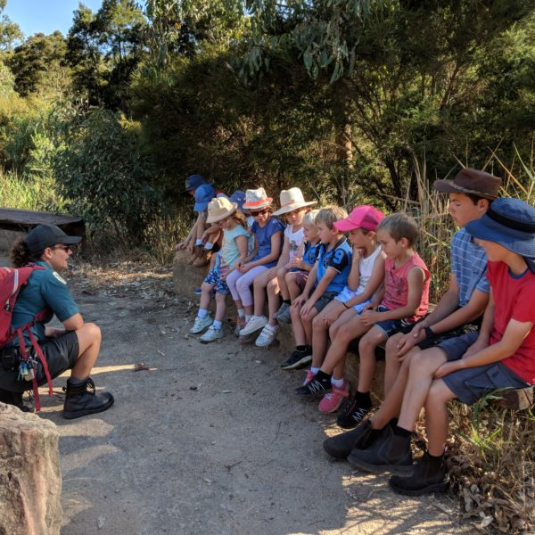 Junior Ranger Sensory Trail
